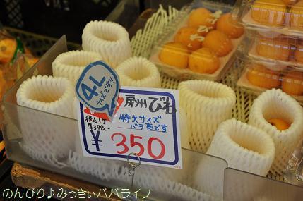 tateyama201505004.jpg