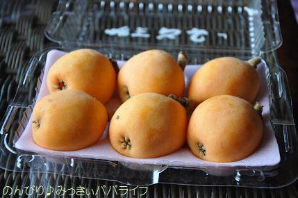 tateyama201505010.jpg