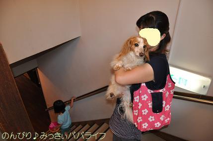 tateyama201505025.jpg