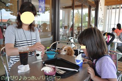 tateyama201505082.jpg