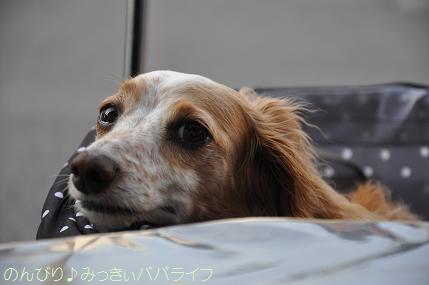 yakitori201505no203.jpg