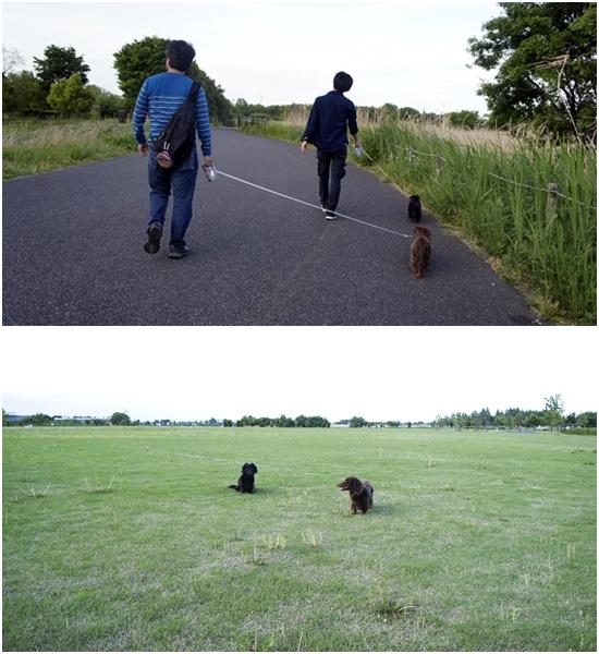 20150503水郷公園2