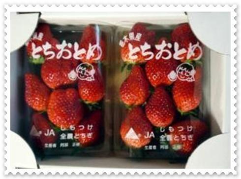 blog_import_53b8b7d044dc0itigo1.jpg