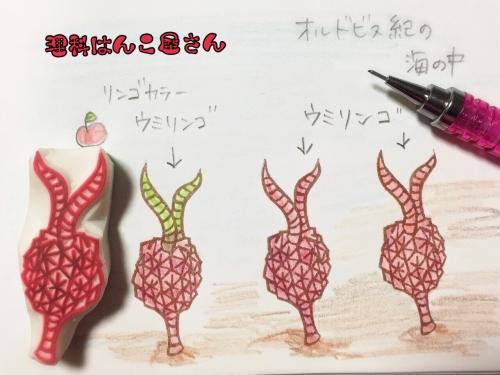 ウミリンゴ