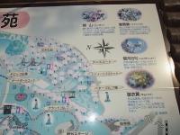 20140504日本国花苑 (23)