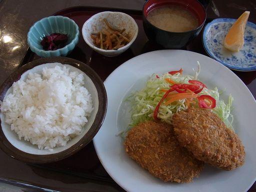 20140613すいれん (4)