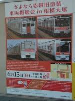 20140615そうにゃん撮影会 (17)
