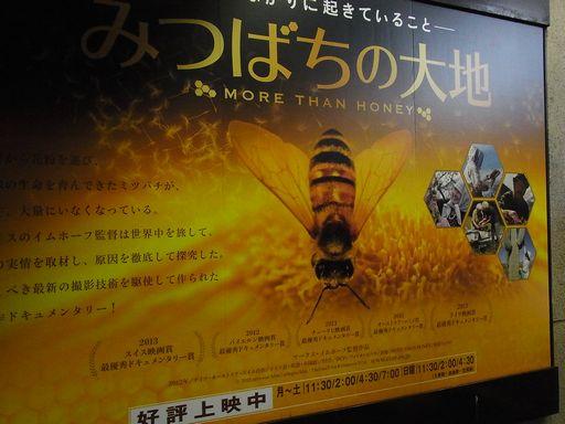 20140621みつばちの大地 (1)