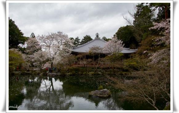 醍醐寺504071