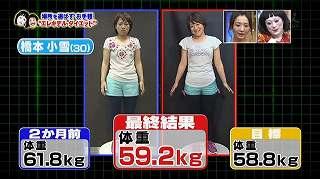 elekitel diet93