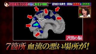 s-motoyamashiki0.jpg