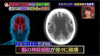 s-motoyamashiki98.jpg