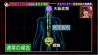 s-motoyamashiki99.jpg