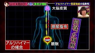 s-motoyamashiki991.jpg