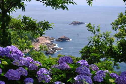 桃源郷岬 (2)