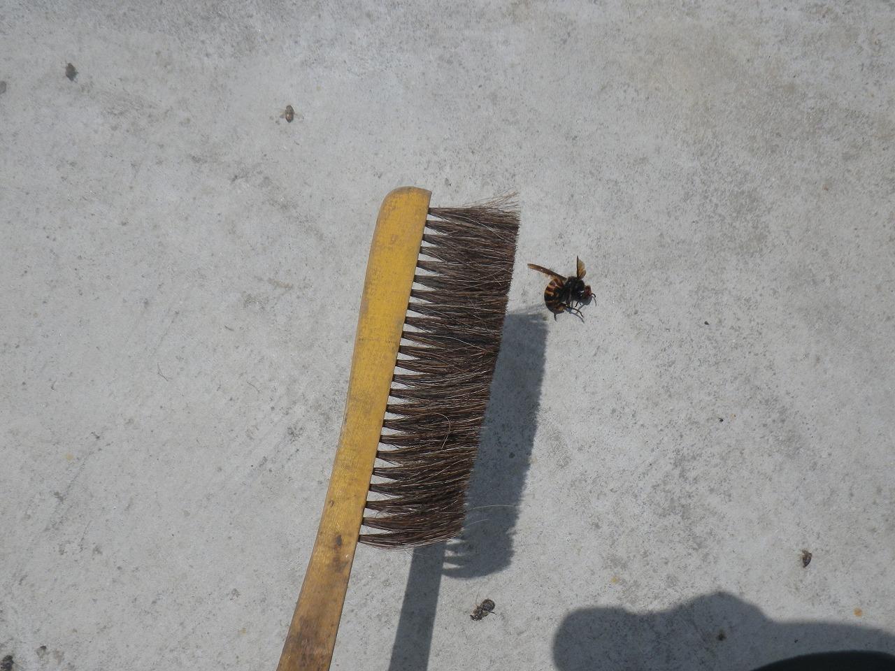 オオスズメバチを倒した武器