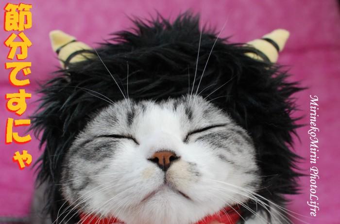 20090118おに猫ミリン1