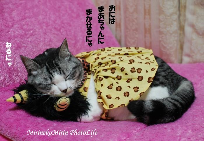 20090203おに猫ミリン3