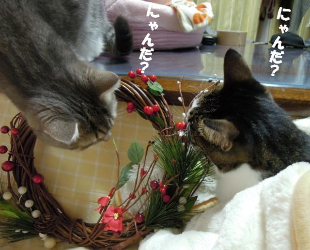 20141230まりココお飾り