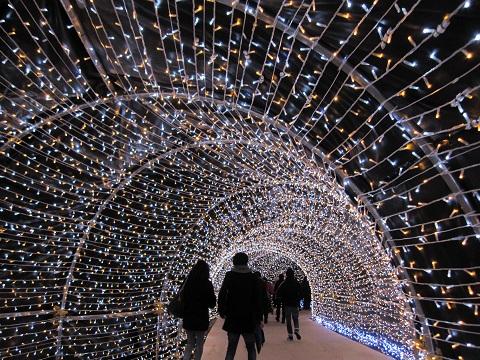 ① 光のトンネル