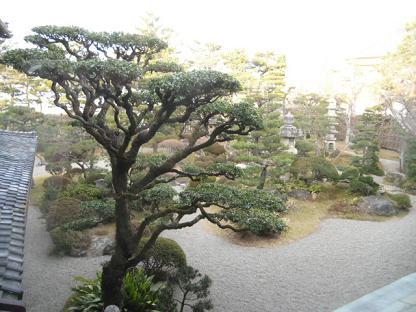 10 二階から見たお庭