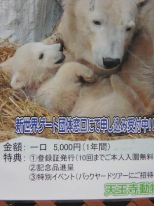 3 昨年11月に生まれた小熊