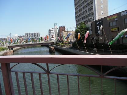 12 堺駅下の堅川に飾られた鯉のぼり