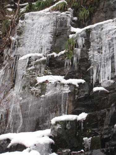 近くの東尾の滝です