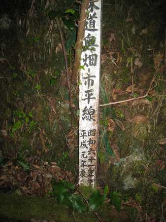 IMG_4350市平上へ林道歩き