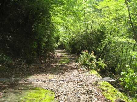 IMG_4725ひたすら林道を下ります、以前は登山口下の砂防提まで車が乗り入れ出来ました