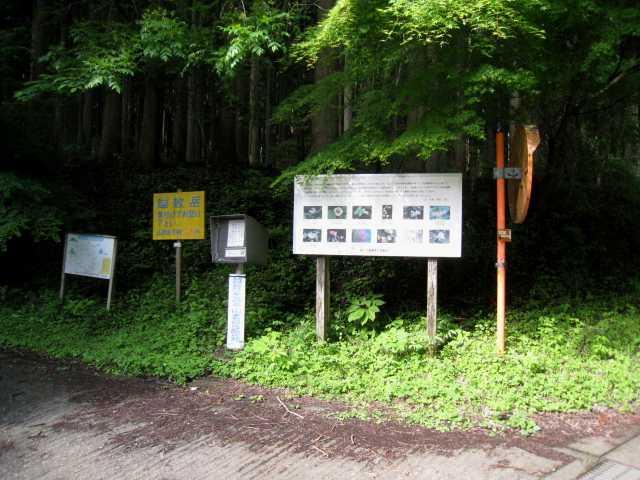 IMG_4984 緩木山、越敷岳登山口を出発 9:00