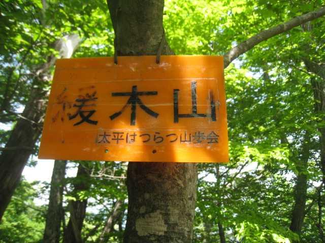 IMG_5020 山頂標識です