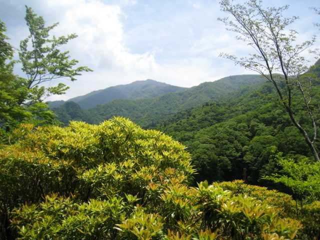 IMG_5024南側に縦走路より祖母山を見る