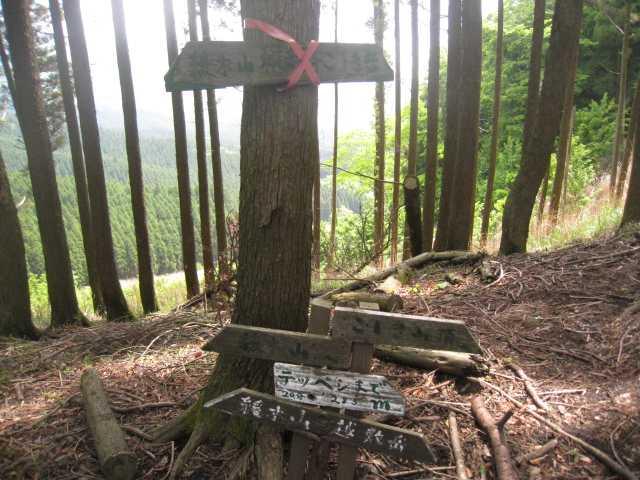 IMG_5050越敷岳下山口です