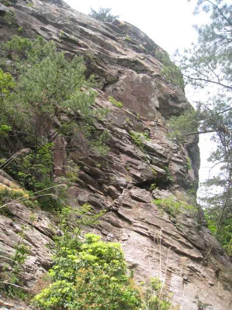 IMG_5055巻き道より山頂の岩壁を見上げる
