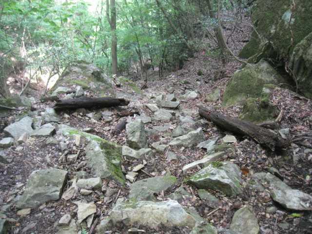 IMG_5078緩木山登山道とは正反対、ガレバと木の根っこの連続、展望台からの明神の滝を見逃しました