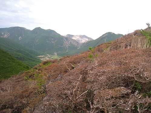 IMG_5261平治岳中腹より三又山