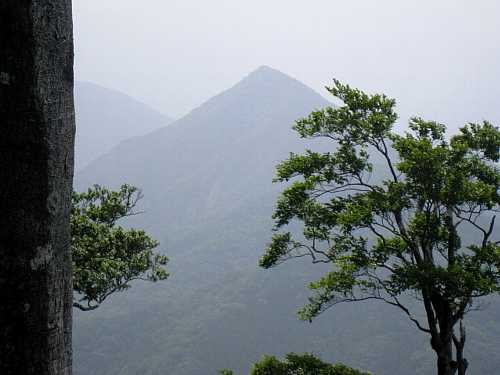IMG_5524 刈又山を望む