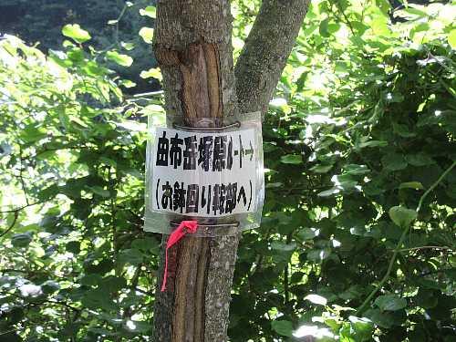 IMG_0013林道の標識