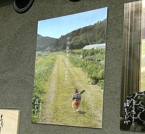 11959_01.jpg