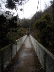 10つり橋