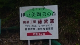 20150517原生の森24