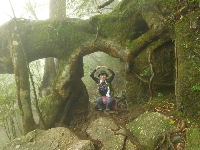 150508屋久島巨木 (6)