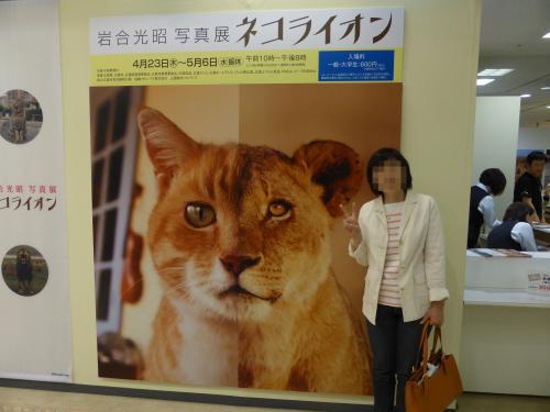ネコライオン 4