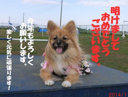 034繝シ譁ー蟷エ謖ィ諡カ_convert_20141231222905