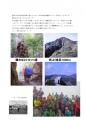 屋久島レポート-6