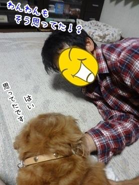 kinako2632.jpg