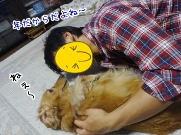 kinako2633.jpg