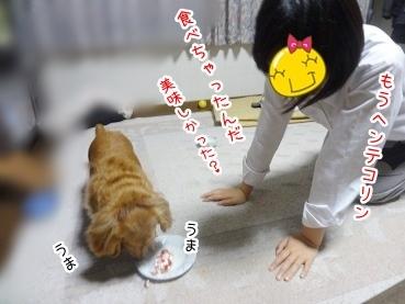 kinako2664.jpg