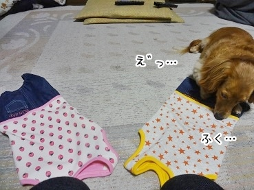 kinako2668.jpg